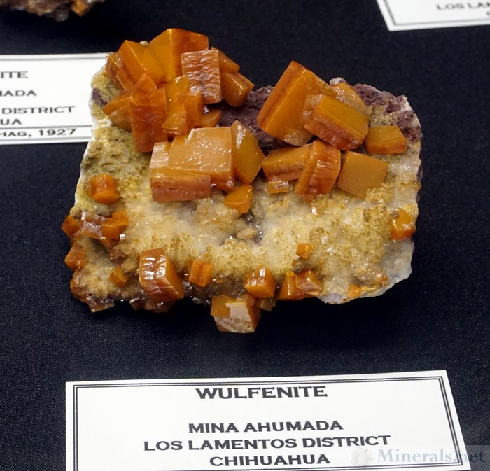 Wulfenite from Mina Ahumada, Lost Lamentos, Chihuahua, Mexico, The Megaw Family