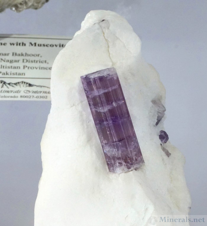 Purple Gemmy Scapolite on Matrix from Fargon Meeru, Kokcha Valley, Badakshan, Afghanistan, Mountain Minerals International
