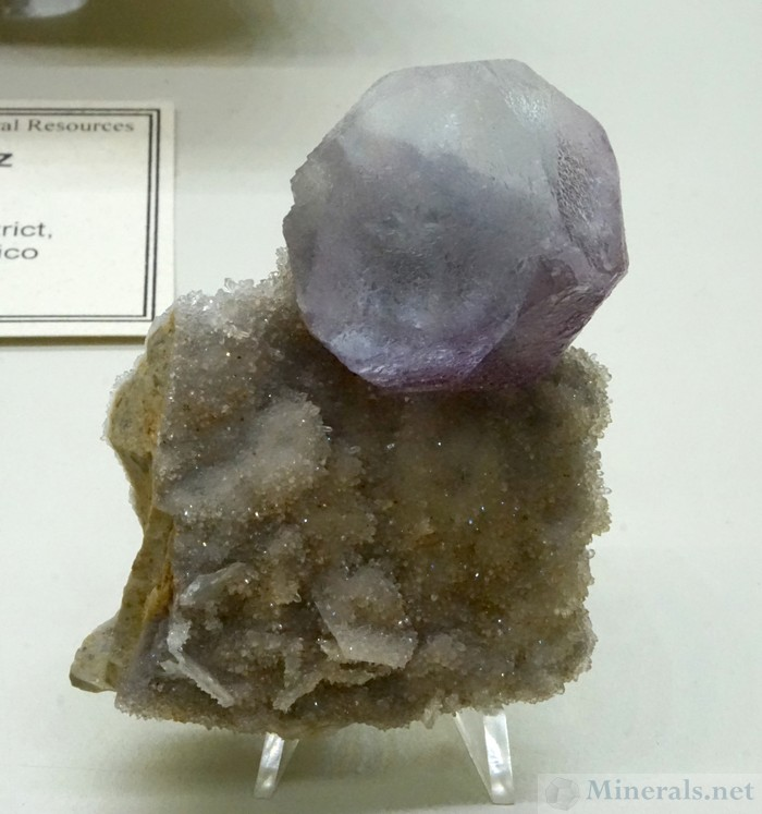 Complex Fluorite Crystal from the Mex-Tex Mine, Hansonburg District, Socorro Co., New Mexico