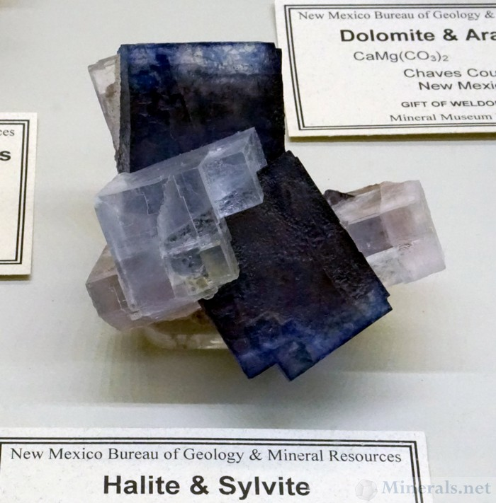 Halite & Sylvite from the Kerr McGee Mine, Carlsbad District, Eddy Co., New Mexico