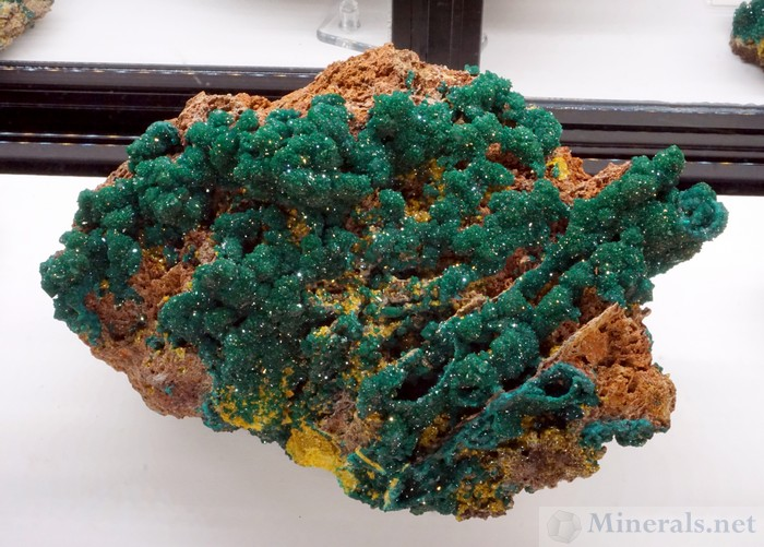 Dioptase with Mimetite from near Mindouli, Pool Dept, Republic of Congo: Weinrich Minerals