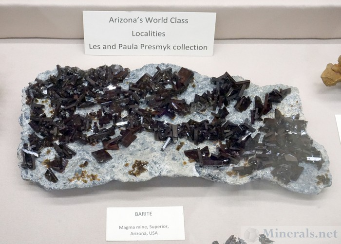 Large Plate of Barite Crystals on Matrix from the Magma Mine, Superior, Arizona - Les and Paula Presmyk Collection